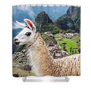 Llama At Machu Picchu Shower Curtain