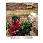 Llama Herder Shower Curtain