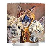 Llama Love Shower Curtain