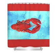 Lobster On Turquoise Shower Curtain