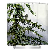 Lofty Perch Shower Curtain