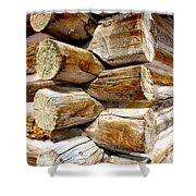 Log Cabin Corner Shower Curtain