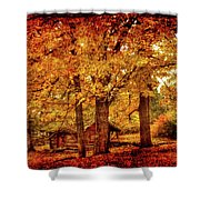 Log Cabin At  Ringwood Manor New Jersey Shower Curtain