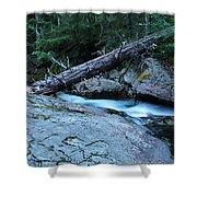 Log Over Deep Creek Shower Curtain
