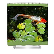 Loi With Lily Pads C Shower Curtain