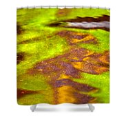 Lollipop Shower Curtain