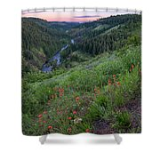 Lolo Creek Spring Shower Curtain