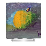 Lone Apple Shower Curtain