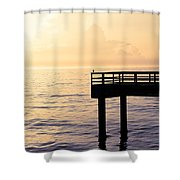 Lone Bird At Morning Shower Curtain
