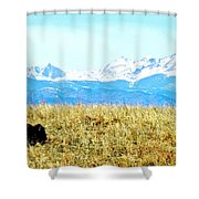 Lone Buffalo Watching The Rocky Mountains Shower Curtain