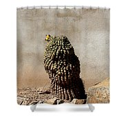 Lone Cactus In Sepia Tone Shower Curtain