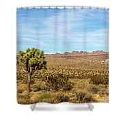 Lone Joshua Tree - Pleasant Valley Shower Curtain