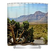 Lone Juniper At Red Rock Shower Curtain