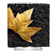 Lone Leaf Shower Curtain by Carlos Caetano