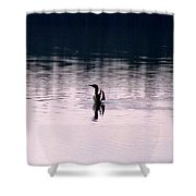 Lone Loon Shower Curtain