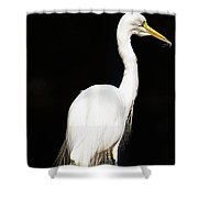 Lone One Shower Curtain
