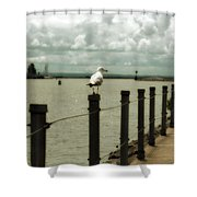 Lone Pier Seagull Shower Curtain