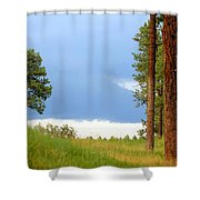 Lone Pine Shower Curtain
