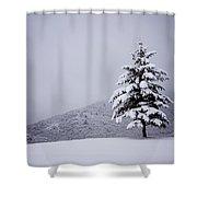 Lone Pine Shower Curtain