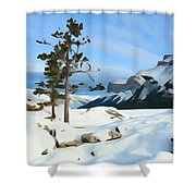 Lone Pines On Lakeshore Shower Curtain