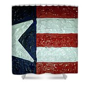 Lone Star State Shower Curtain