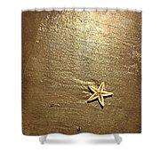 Lone Starfish On The Beach Shower Curtain