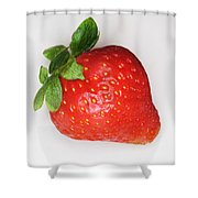 Lone Strawberry Shower Curtain