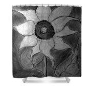 Lone Sunflower Iv Shower Curtain