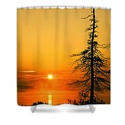 Lone Tree At Dawn Shower Curtain