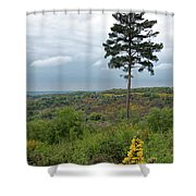 Lone Tree At Devils Punch Bowl Shower Curtain