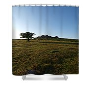 Lone Tree, Dartmoor Shower Curtain