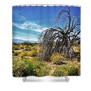Lone Tree In Blooming Desert Shower Curtain