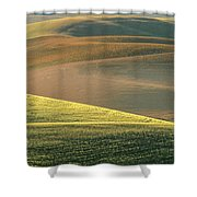 Lone Tree In The Palouse  Shower Curtain
