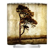 Lone Tree Shower Curtain by Julie Hamilton