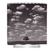 Lone Tree Morning In B And W Shower Curtain