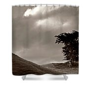 Lone Tree On A New Zealand Hillside Shower Curtain