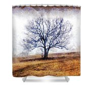 Lone Tree On Hill In Winter Shower Curtain