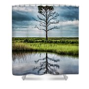 Lone Tree Reflected Shower Curtain