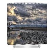 Lone Tree Under Moody Skies Shower Curtain