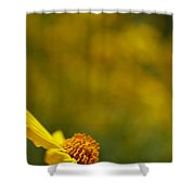 Lone Wildflower - Yellow Shower Curtain