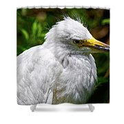 Lonely Bird Shower Curtain