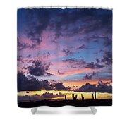 Cacti Sunset Shower Curtain
