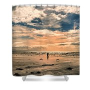 Lonely Couple  Shower Curtain