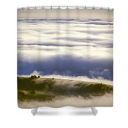 Lonely Cow Shower Curtain