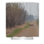 Lonely Deer Crossing Shower Curtain