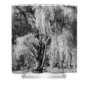 Lonely Dreams Shower Curtain