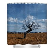 Lonely Dry Tree In A Field Shower Curtain