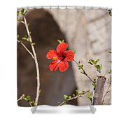 Lonely Floral Shower Curtain