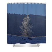 Lonely Frosty Tree Shower Curtain