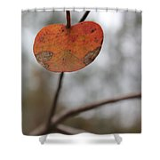Lonely Leaf Shower Curtain